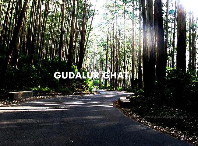 Gudalur Ghat Road