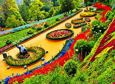 Ooty Sightseeing Tour Packages