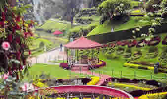 Top 4 Beautiful Gardens in Ooty