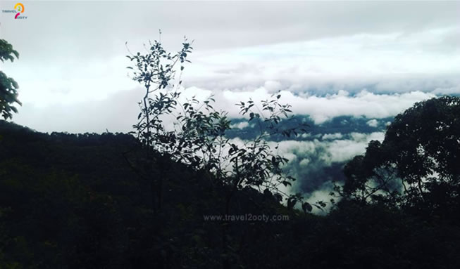 cloudy-nilgiris