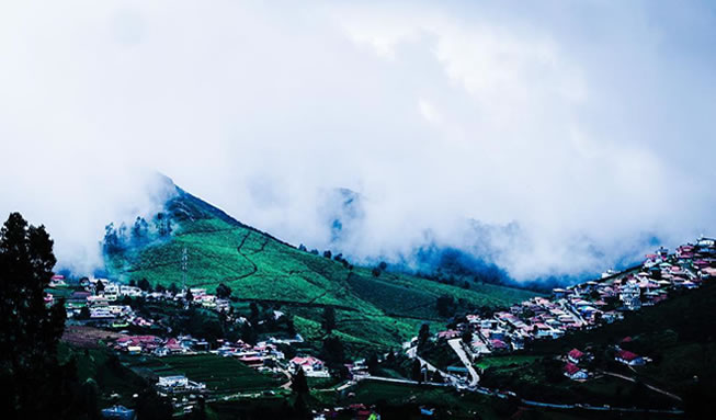 ooty beautiful nature