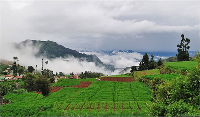 ooty hillstation