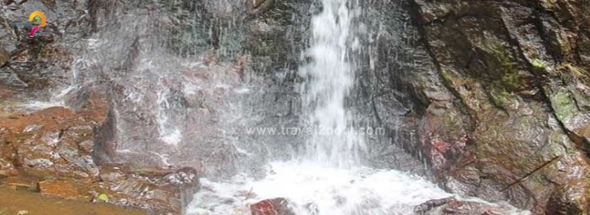 pure water avalanche ooty