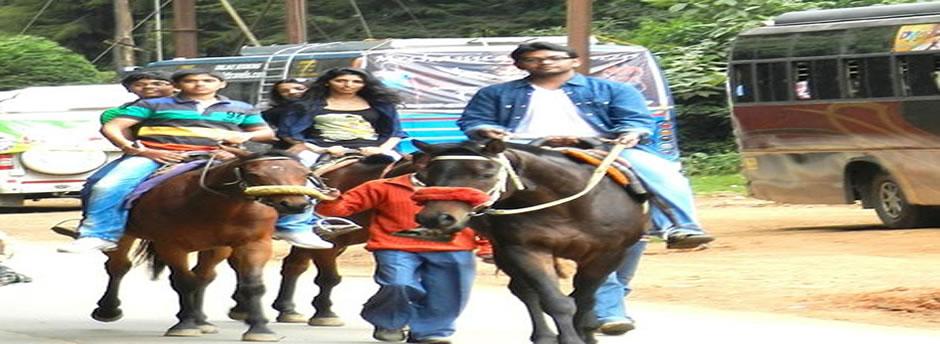 horse ride ooty lake