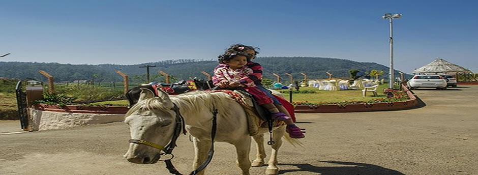 horse ride ooty