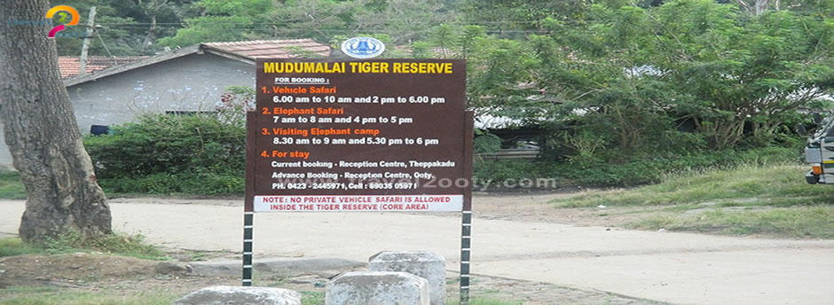 mudumalai sari timings